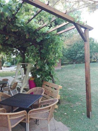 Arqua Polesine, Ιταλία: IMG_20160714_194410_large.jpg