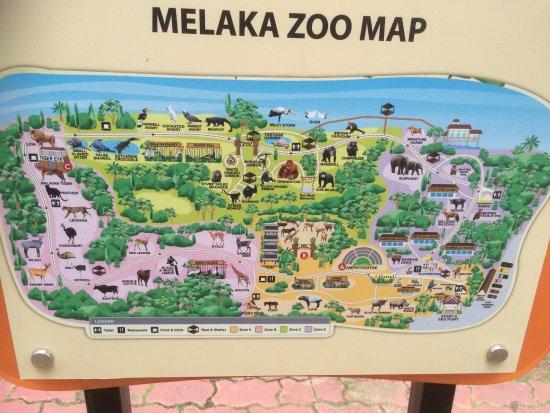 photo6jpg  Picture of Melaka Zoo and Night Safari Ayer Keroh