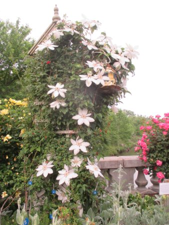 Lake Lure, NC: Flowering Bridge