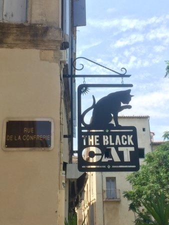 The black cat: photo3.jpg