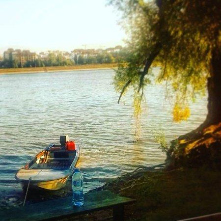 Dunavski Kej 25maj A Preko Reke šumarak Netaknuta Priroda