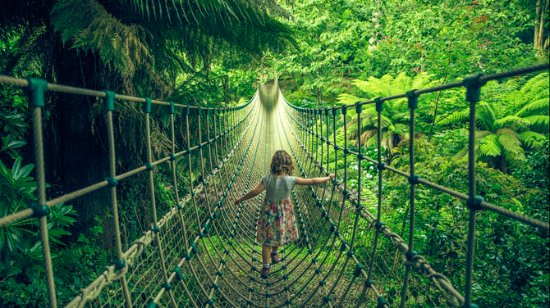 St Austell, UK: Cross the Jungle on a Burmese rope bridge