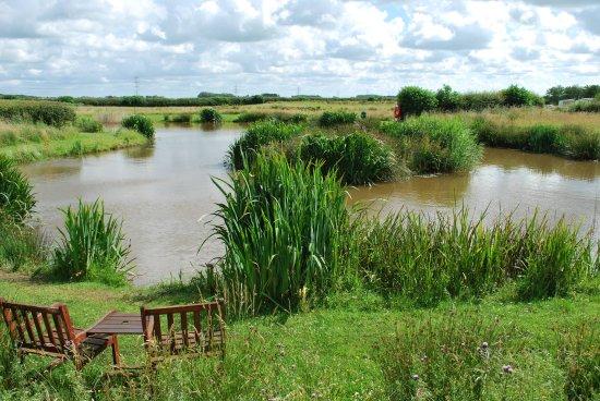 Fishing Lake - Picture of Moss Wood Caravan Park, Cockerham