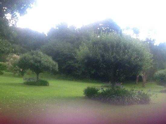Bonython Estate Gardens: photo1.jpg