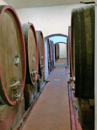 Guided Tours of Florence: Cavas