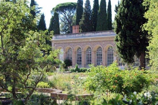 La serre tropicale picture of jardin des plantes montpellier tripadvisor - Jardin d essence montpellier ...