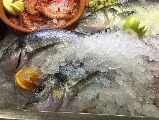 Santiago de la Ribera, Spania: Nuestro pescado y marisco fresco del día