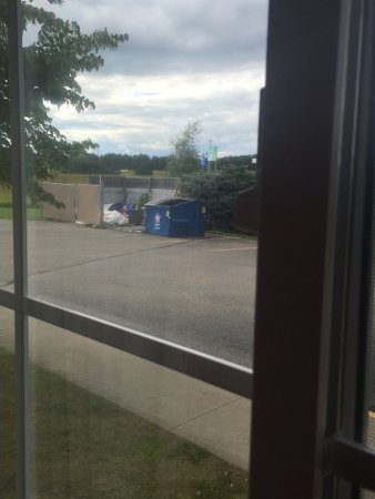 Houghton Lake, MI: Dead bugs and mold in shower. Carpet gross and not vacuumed. Desk broke. View out my window look