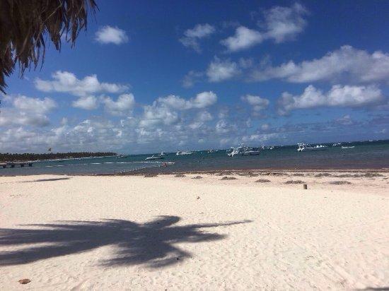 El Navegante: Great place...