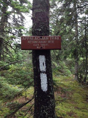 Millinocket, Μέιν: Walking on the Appalachian Trail
