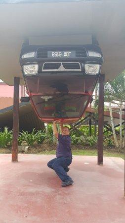 Tamparuli, Malezja: Carrying a car? Impressive.