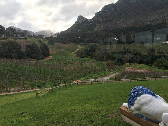 Constantia, Sudáfrica: Eine ganz tolle Weintestung