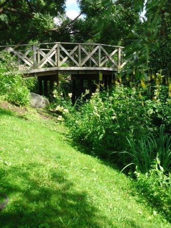 Hatanpää Arboretum: The Bridge over small Stream, which runs to the Lake Pyhäjärvi.