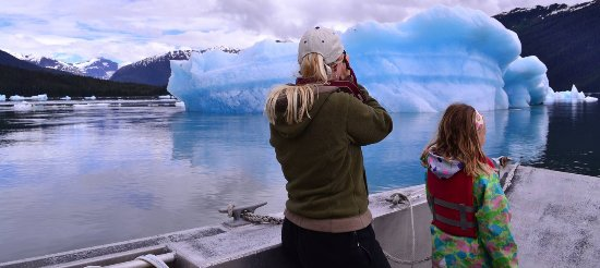 Petersburg, AK: Ice bergs in LeConte Bay