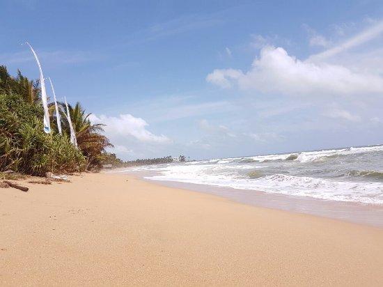 Bentota, Sri Lanka: 20160708_141649_large.jpg