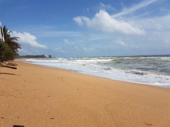 Bentota, Sri Lanka: 20160708_141629_large.jpg