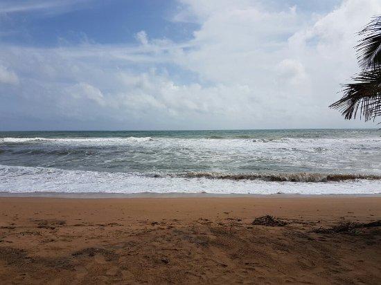 Bentota, Sri Lanka: 20160708_141617_large.jpg
