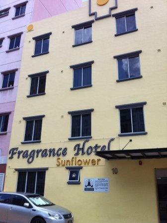 Fragrance Hotel - Sunflower Photo