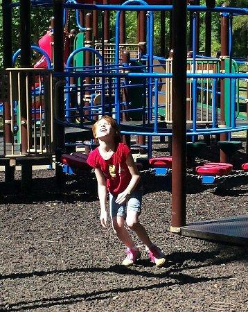 Willow Springs Park Johnson City Tn