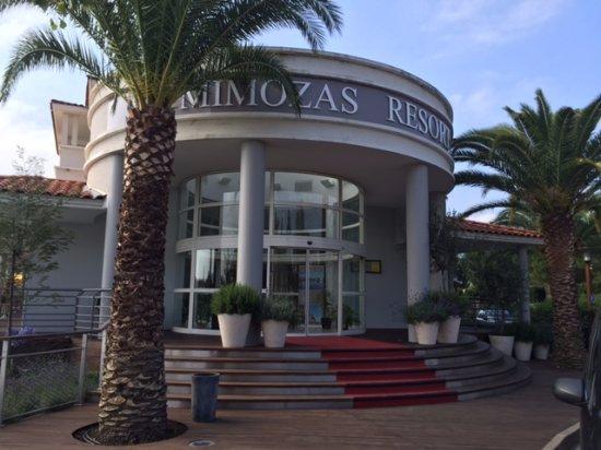 Mimoza Resort Image