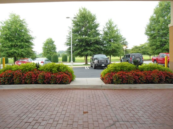 Holiday Inn Express & Suites Atlanta East-Lithonia: View from Hotel