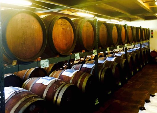 Bomporto, Włochy: batteries of old casks waiting slowely untill full body flavour develops