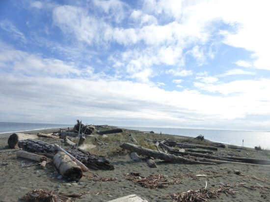 Sequim, WA: Heading out along the spit. The lighthouse is barely visible at the far right.