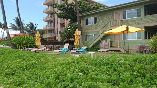 Kihei Kai Oceanfront Condos: photo1.jpg