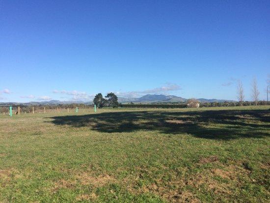 Brackenridge Country Retreat : photo0.jpg