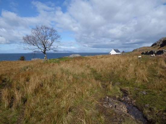 Glenuig, UK: Gorgeous location for a holiday cottage