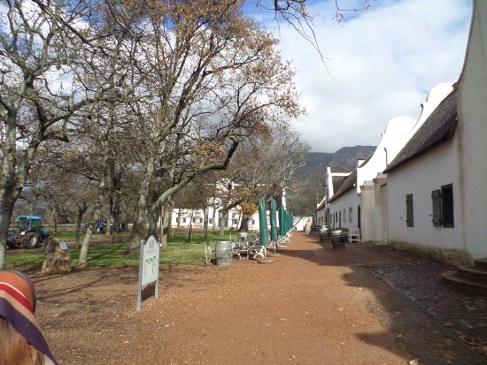 Constantia, Sudáfrica: Outside view of Estate and historic buildings