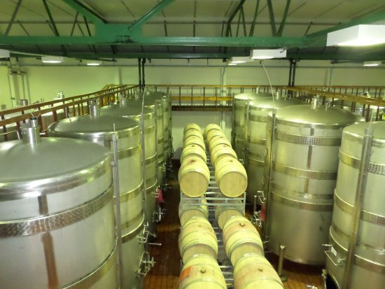 Constantia, Sør-Afrika: Barrels with wine in the cellar