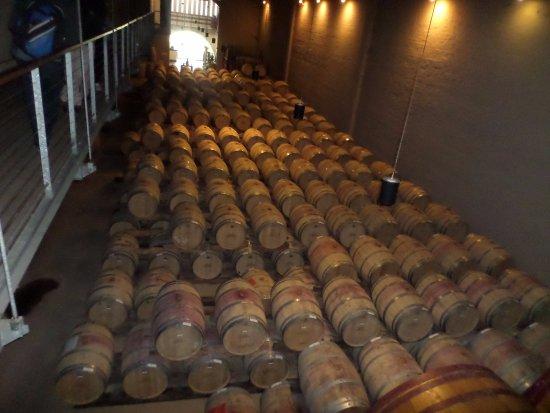 Constantia, Sudáfrica: Barrels with export quality wine