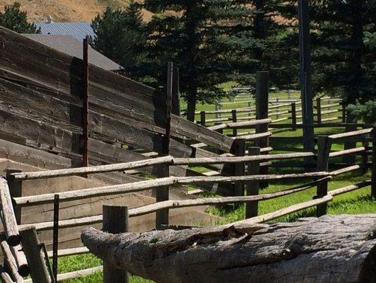 Cheyenne, WY: Fences