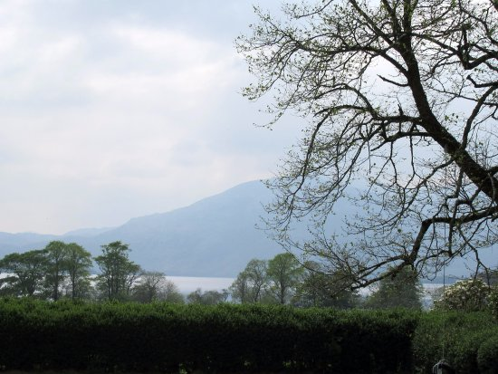 Carriglea House: Looking out at the mountains