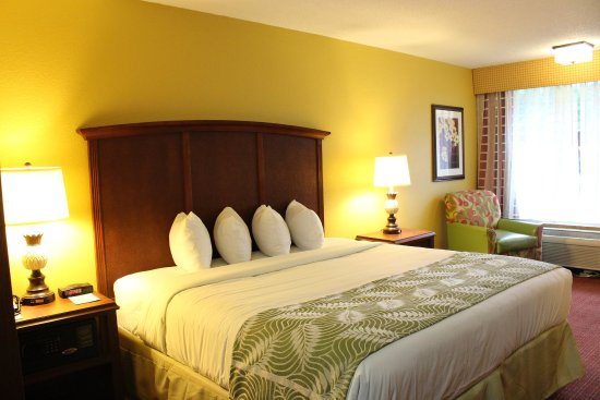Rosen Inn International: Room Standard King