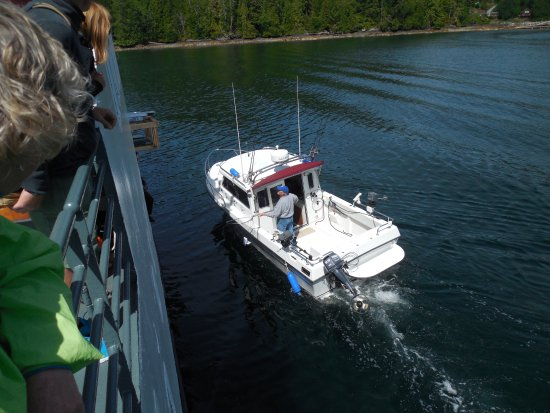 Port Alberni, Canadá: Using a dip net to collect package