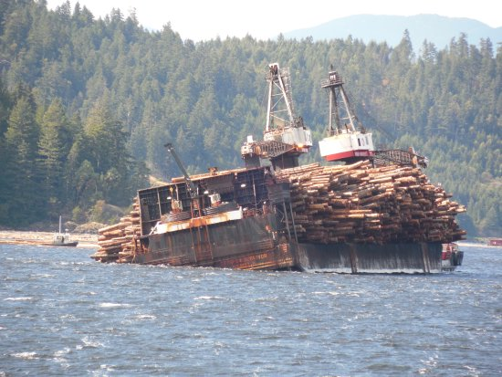 Port Alberni, Canadá: Self dumping log barge starting dumping