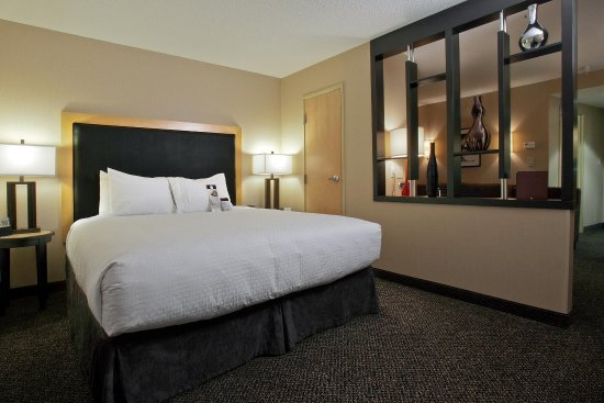 DoubleTree by Hilton Hotel Savannah Airport: Standard King Suite