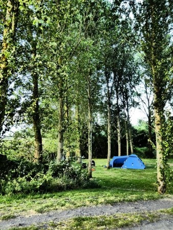 Upstreet, UK : Wonderful campsite