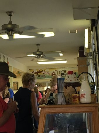 Hillsborough, NC: Wonderful home made ice cream, cheese and fresh milk, butter, etc! Great service!