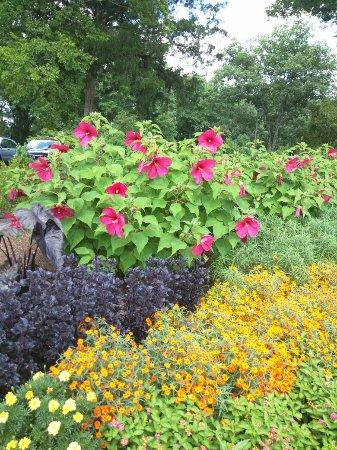 Cheekwood Botanical Gardens & Museum of Art - Picture of Cheekwood ...