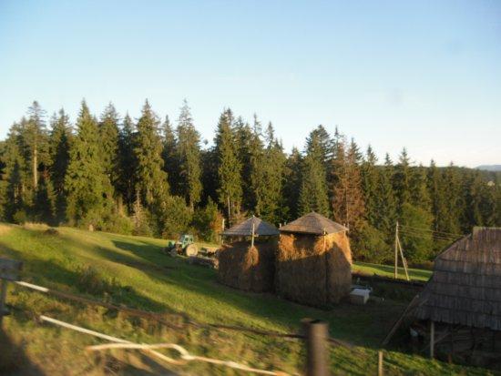 Morshyn, Ukraina: такие осенние мотивы