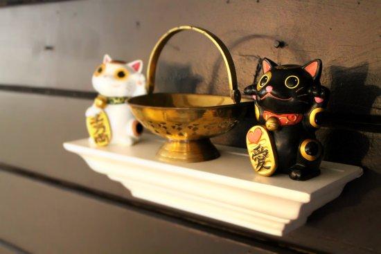 Angel Fire, Nouveau-Mexique : Good Fortune cats