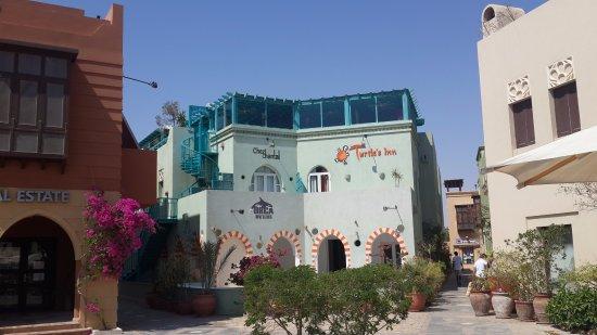 Turtle's Inn Photo