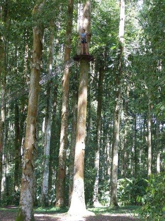 Bedugul, Indonésia: Prenez de la hauteur !