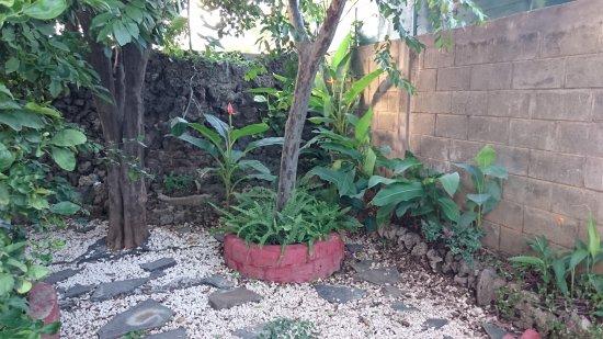 Managua Department, Nicaragua: Backyard Garden
