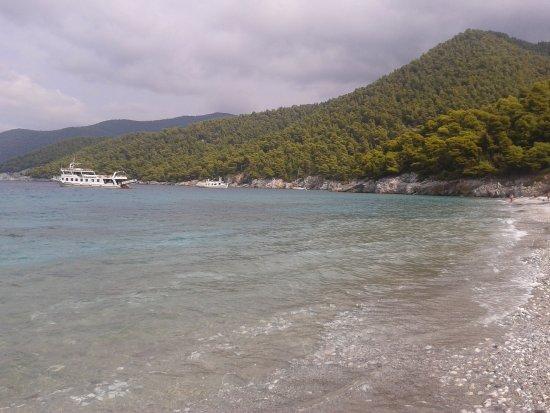 Plaza Milia - Picture of Milia Beach, Skopelos - TripAdvisor
