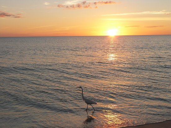 Little Gull Cottages: another lovely sunset over the gulf