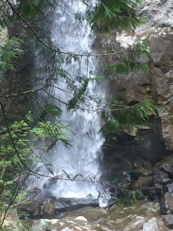 Drift Creek Falls Trail: photo1.jpg